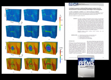 FFEMS_publication